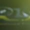 NVIDIA: la nouvelle carte graphique édition limitée Cyberpunk 2077